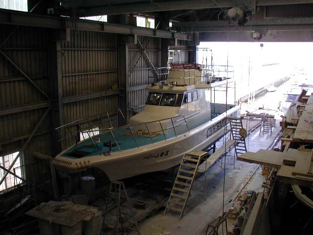 小笠原向きホウェールウオッチング船 ドリーム号 Ⅲ